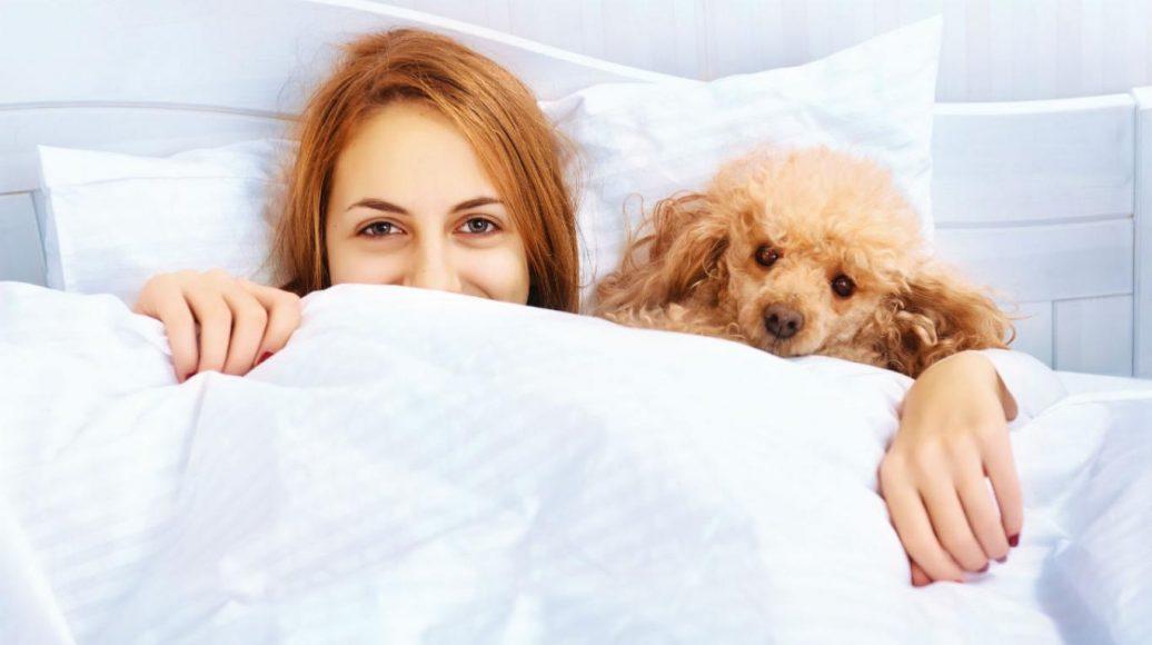 la_ventaja_de_dormir_con_perros